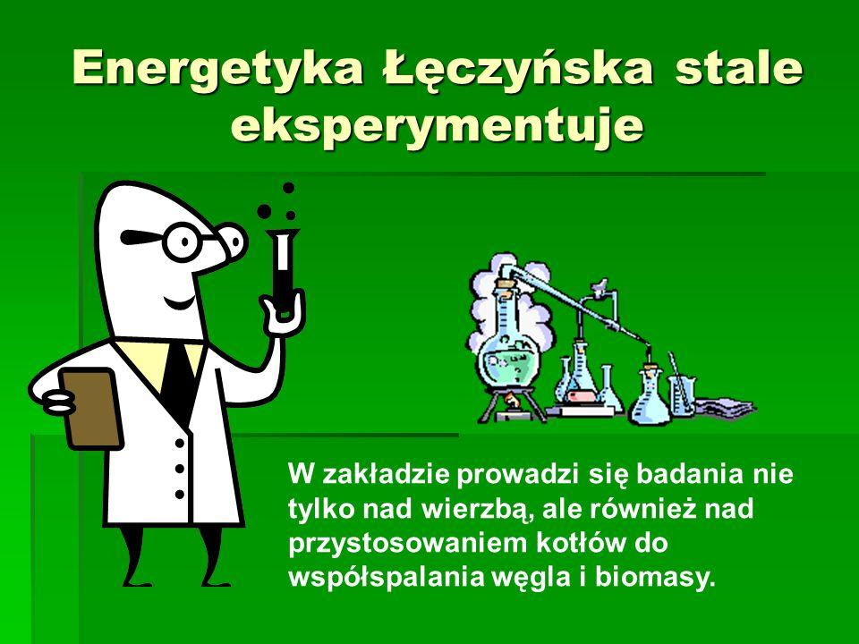 Łęczyńska Energetyka liczy ekologicznie Zmniejsza emisję zanieczyszczeń Dostosowuje się do przepisów UE Modernizuje kotły Prowadzi badania nad uprawą wierzby