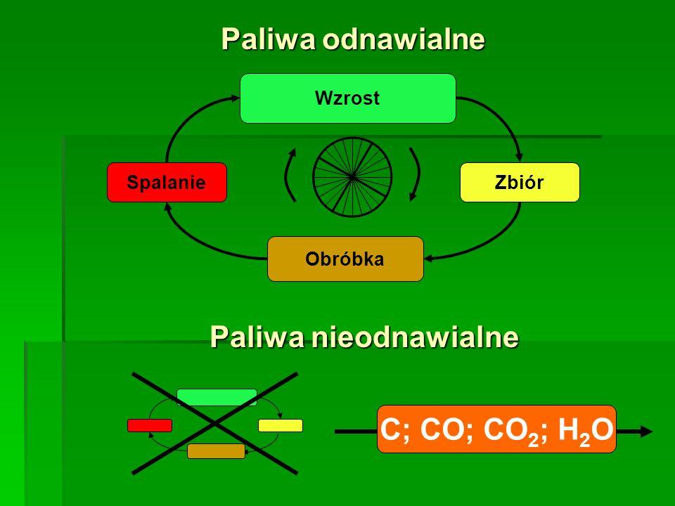 Spalanie Wzrost Zbiór Obróbka C; CO; CO 2 ; H 2 O Paliwa odnawialne Paliwa nieodnawialne