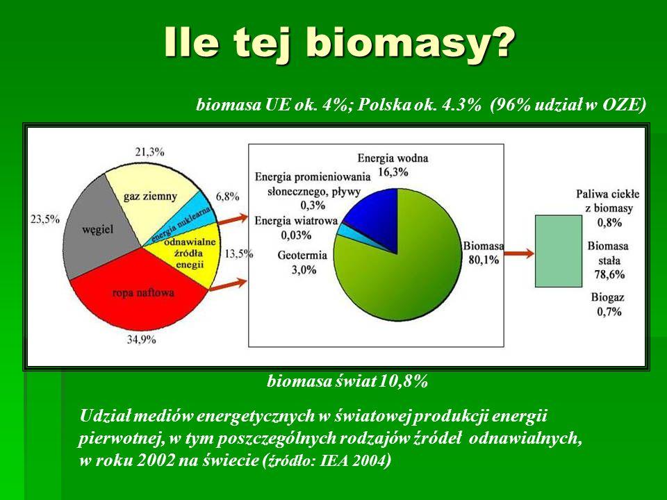 Ile tej biomasy? biomasa świat 10,8% biomasa UE ok. 4%; Polska ok. 4.3% (96% udział w OZE) Udział mediów energetycznych w światowej produkcji energii