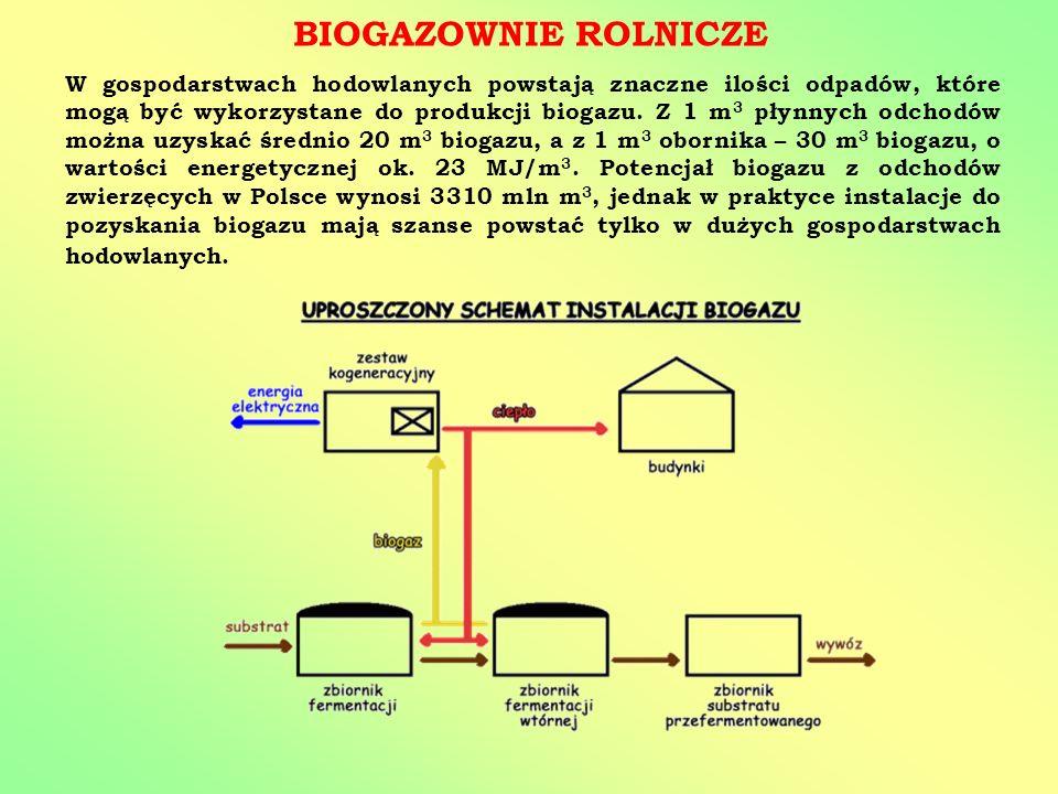 BIOGAZOWNIE ROLNICZE W gospodarstwach hodowlanych powstają znaczne ilości odpadów, które mogą być wykorzystane do produkcji biogazu. Z 1 m 3 płynnych