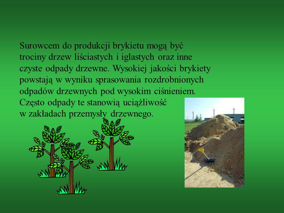 Surowcem do produkcji brykietu mogą być trociny drzew liściastych i iglastych oraz inne czyste odpady drzewne. Wysokiej jakości brykiety powstają w wy