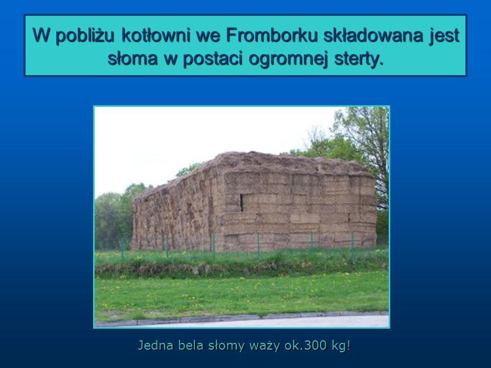 W pobliżu kotłowni we Fromborku składowana jest słoma w postaci ogromnej sterty. Jedna bela słomy waży ok.300 kg!