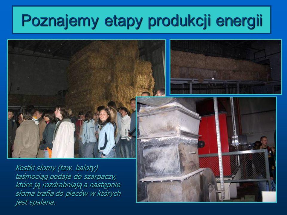 Poznajemy etapy produkcji energii Kostki słomy (tzw. baloty) taśmociąg podaje do szarpaczy, które ją rozdrabniają a następnie słoma trafia do pieców w