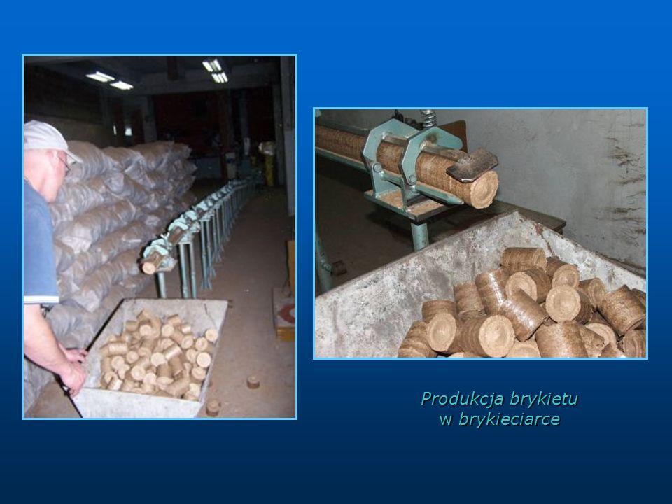Poznajemy etapy produkcji energii Kostki słomy (tzw.