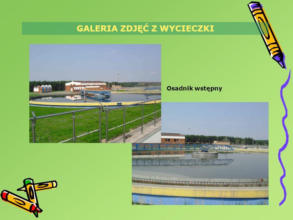 GALERIA ZDJĘĆ Z WYCIECZKI Osadnik wstępny