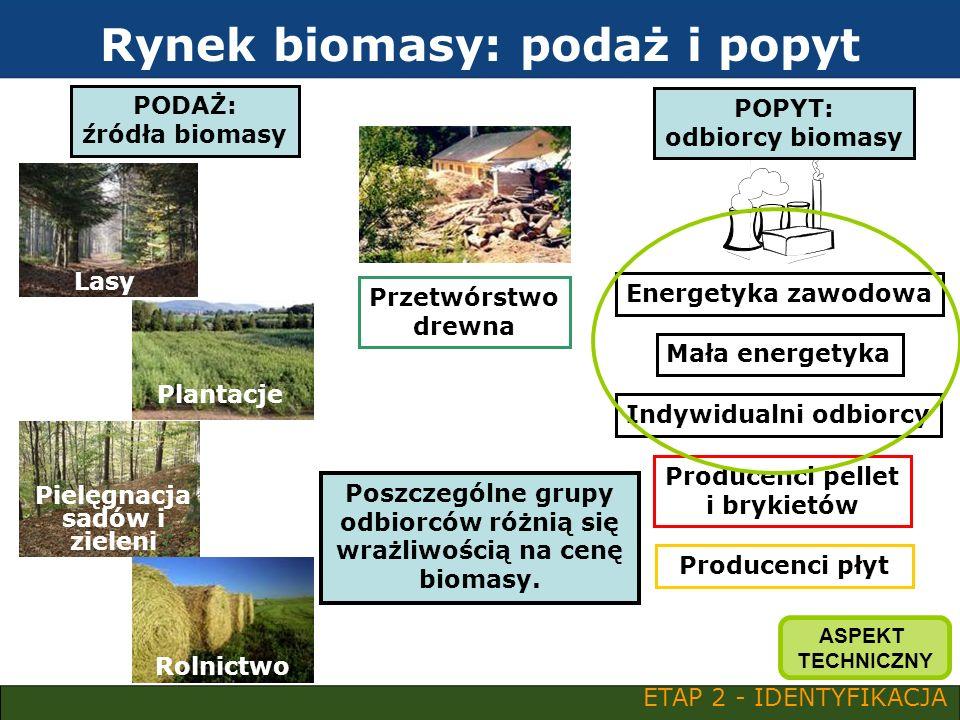 Rynek biomasy: podaż i popyt PODAŻ: źródła biomasy Plantacje Rolnictwo POPYT: odbiorcy biomasy Energetyka zawodowa Mała energetyka Indywidualni odbior