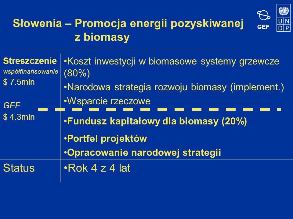 GEF Białoruś – Wykorzystanie biomasy do celów ogrzewania i ciepłej wody Streszczenie współfinansowanie $ 5.6mln GEF $ 3.1mln Inwestycja demonstracyjna –kotłownia Inwestycje od strony podaży Pożyczki na wymianę kotłów / dostawy drewna Budowanie zdolności organizacyjnych Podnoszenie świadomości i replikacja StatusRok 3 z 4 lat