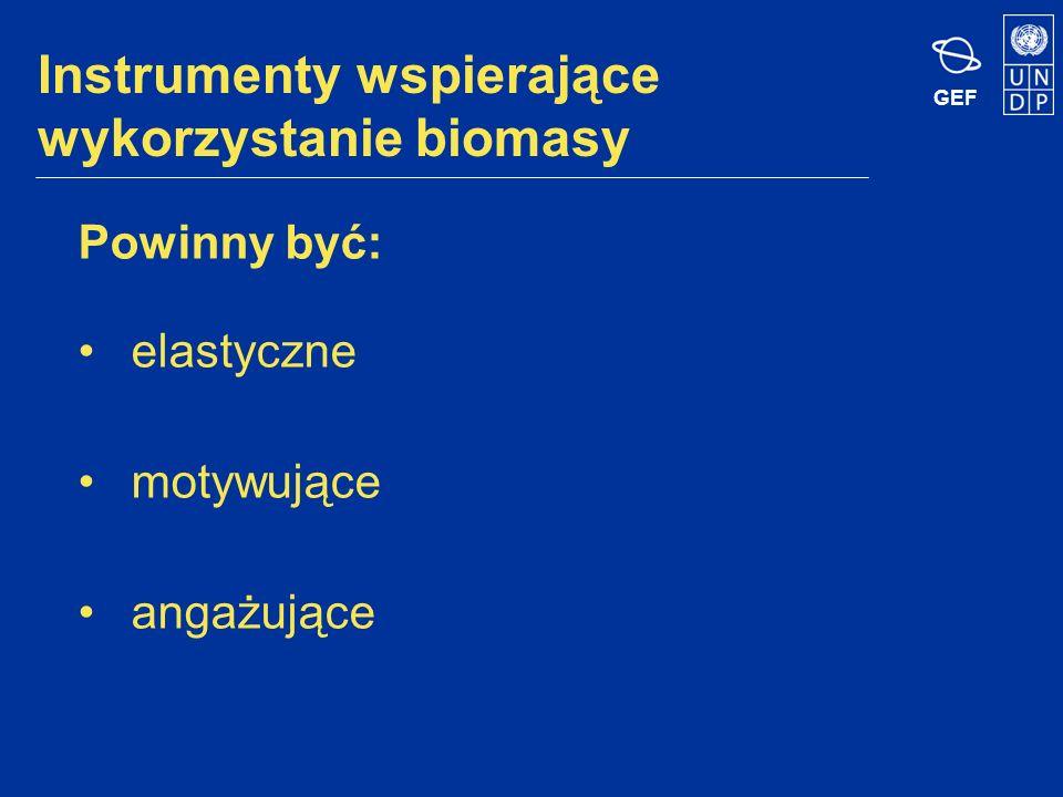 GEF Instrumenty wspierające wykorzystanie biomasy Powinny być: elastyczne motywujące angażujące