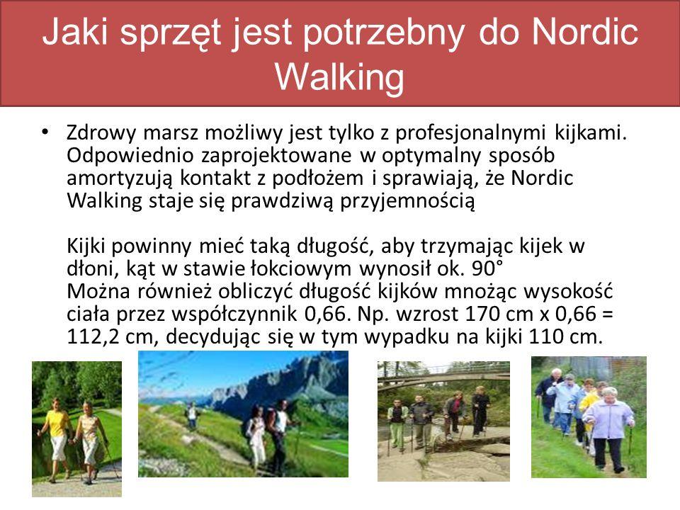 Jaki sprzęt jest potrzebny do Nordic Walking Zdrowy marsz możliwy jest tylko z profesjonalnymi kijkami.