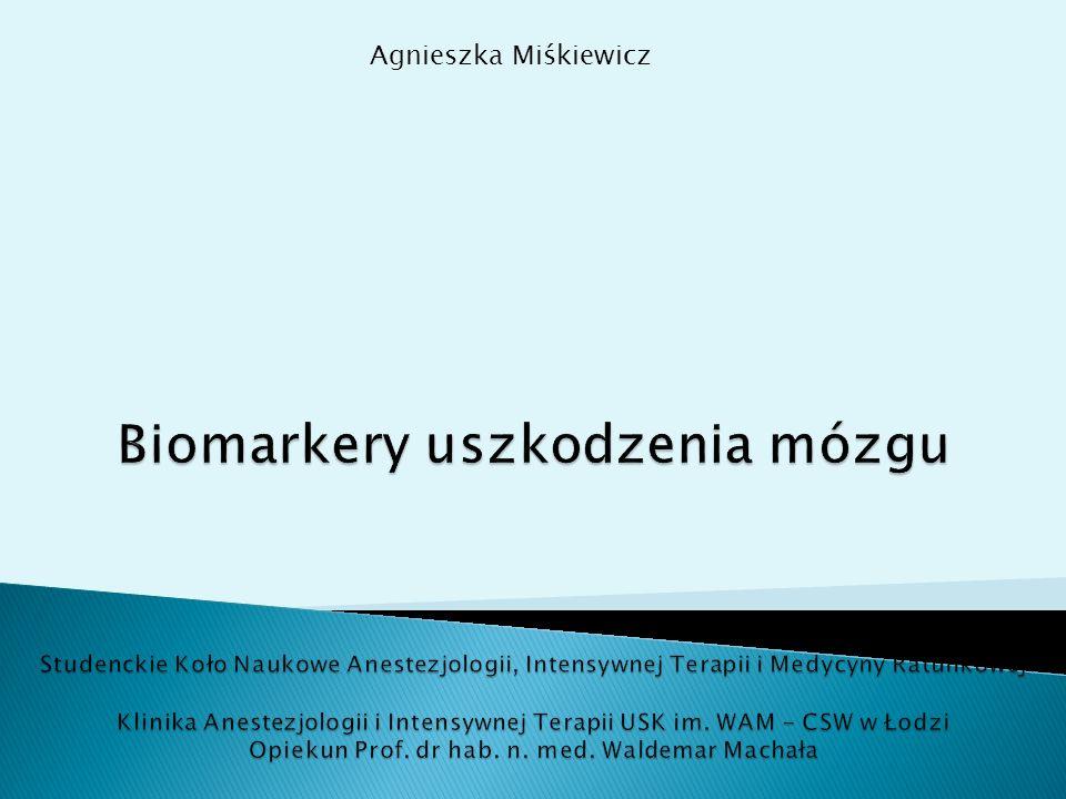 Agnieszka Miśkiewicz