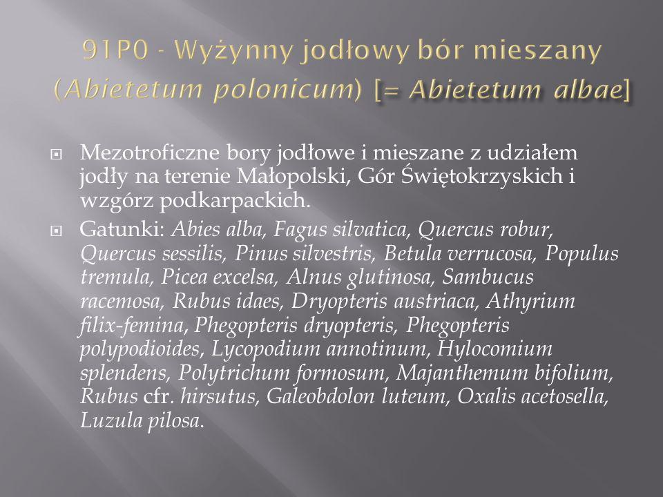 Mezotroficzne bory jodłowe i mieszane z udziałem jodły na terenie Małopolski, Gór Świętokrzyskich i wzgórz podkarpackich. Gatunki: Abies alba, Fagus s