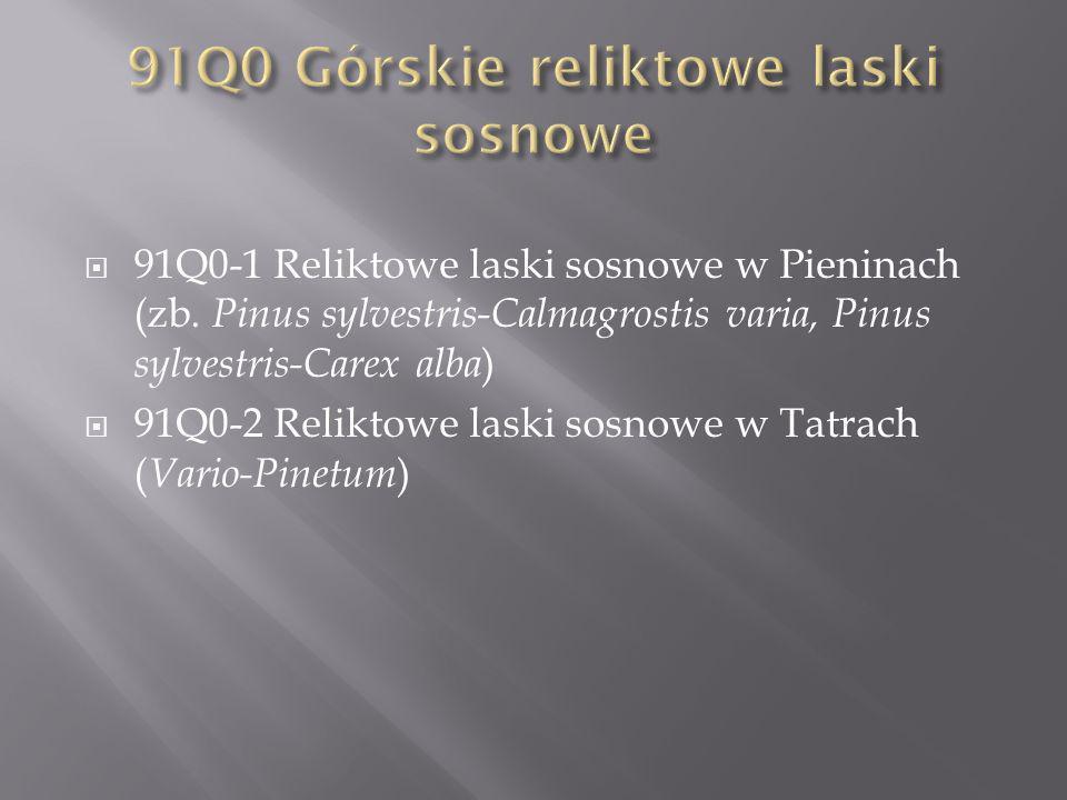 91Q0-1 Reliktowe laski sosnowe w Pieninach (zb. Pinus sylvestris-Calmagrostis varia, Pinus sylvestris-Carex alba ) 91Q0-2 Reliktowe laski sosnowe w Ta
