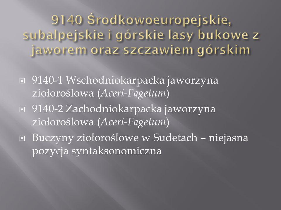9140-1 Wschodniokarpacka jaworzyna ziołoroślowa ( Aceri-Fagetum ) 9140-2 Zachodniokarpacka jaworzyna ziołoroślowa ( Aceri-Fagetum ) Buczyny ziołoroślowe w Sudetach – niejasna pozycja syntaksonomiczna