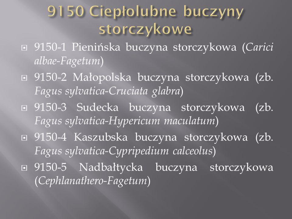 9150-1 Pienińska buczyna storczykowa ( Carici albae-Fagetum ) 9150-2 Małopolska buczyna storczykowa (zb.