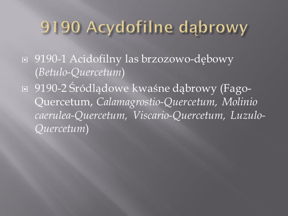 9190-1 Acidofilny las brzozowo-dębowy ( Betulo-Quercetum ) 9190-2 Śródlądowe kwaśne dąbrowy (Fago- Quercetum, Calamagrostio-Quercetum, Molinio caerulea-Quercetum, Viscario-Quercetum, Luzulo- Quercetum )