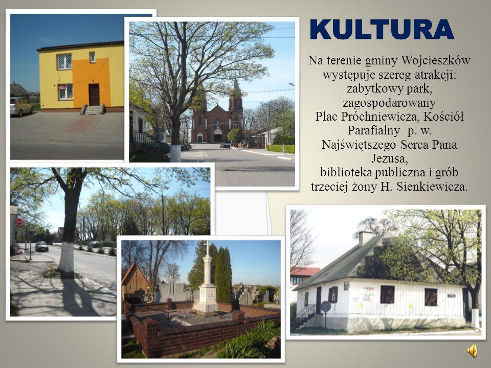 W zakresie działań inwestycyjnych zbudowano piękny zespół szkół w Wojcieszkowie z nowoczesną wielofunkcyjną halą sportową i zespołem żywieniowym.