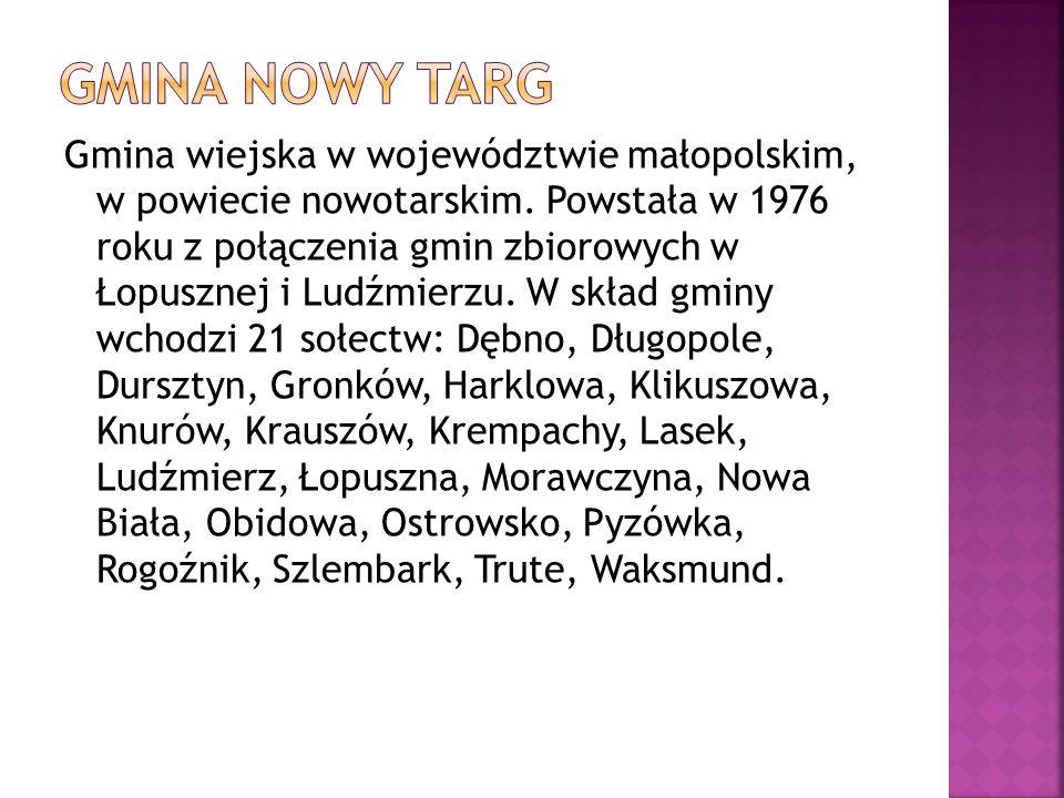 Gmina wiejska w województwie małopolskim, w powiecie nowotarskim. Powstała w 1976 roku z połączenia gmin zbiorowych w Łopusznej i Ludźmierzu. W skład