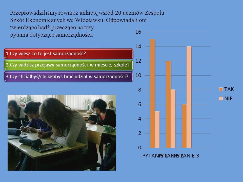 Przeprowadziliśmy również ankietę wśród 20 uczniów Zespołu Szkół Ekonomicznych we Włocławku. Odpowiadali oni twierdząco bądź przecząco na trzy pytania