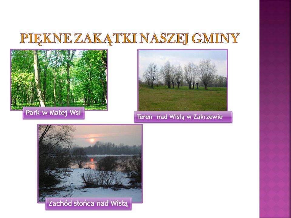 Park w Małej Wsi Teren nad Wisłą w Zakrzewie Zachód słońca nad Wisłą