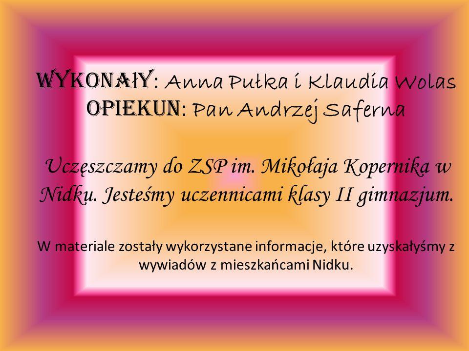 Wykona ł y : Anna Pułka i Klaudia Wolas Opiekun : Pan Andrzej Saferna Uczęszczamy do ZSP im.