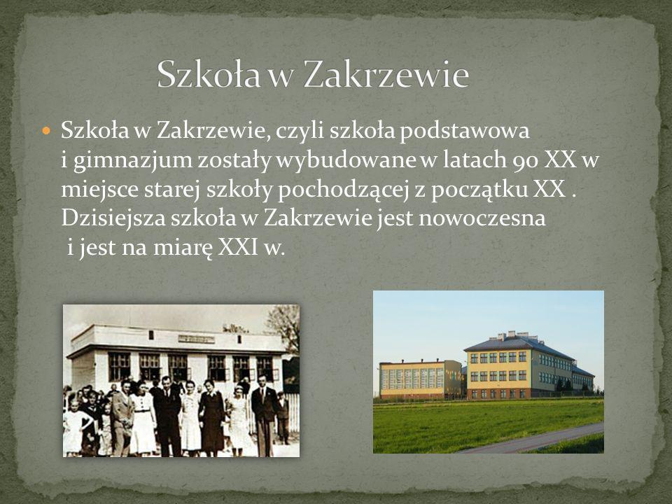 Szkoła w Zakrzewie, czyli szkoła podstawowa i gimnazjum zostały wybudowane w latach 90 XX w miejsce starej szkoły pochodzącej z początku XX. Dzisiejsz