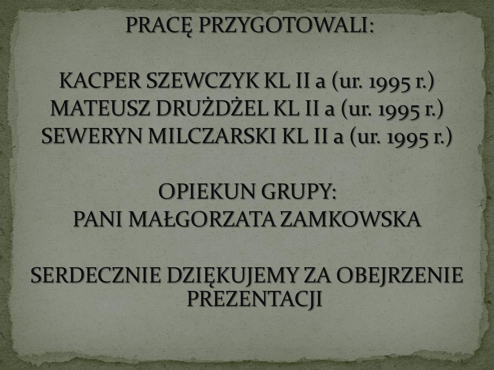 PRACĘ PRZYGOTOWALI: KACPER SZEWCZYK KL II a (ur. 1995 r.) MATEUSZ DRUŻDŻEL KL II a (ur. 1995 r.) SEWERYN MILCZARSKI KL II a (ur. 1995 r.) OPIEKUN GRUP