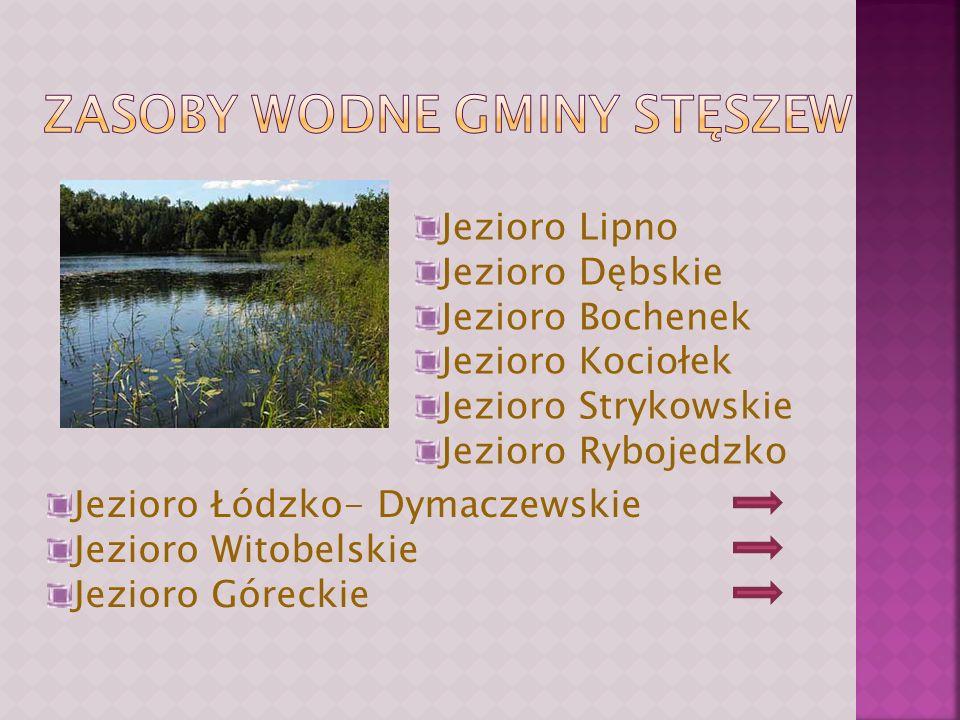 Jezioro Lipno Jezioro Dębskie Jezioro Bochenek Jezioro Kociołek Jezioro Strykowskie Jezioro Rybojedzko Jezioro Łódzko- Dymaczewskie Jezioro Witobelskie Jezioro Góreckie