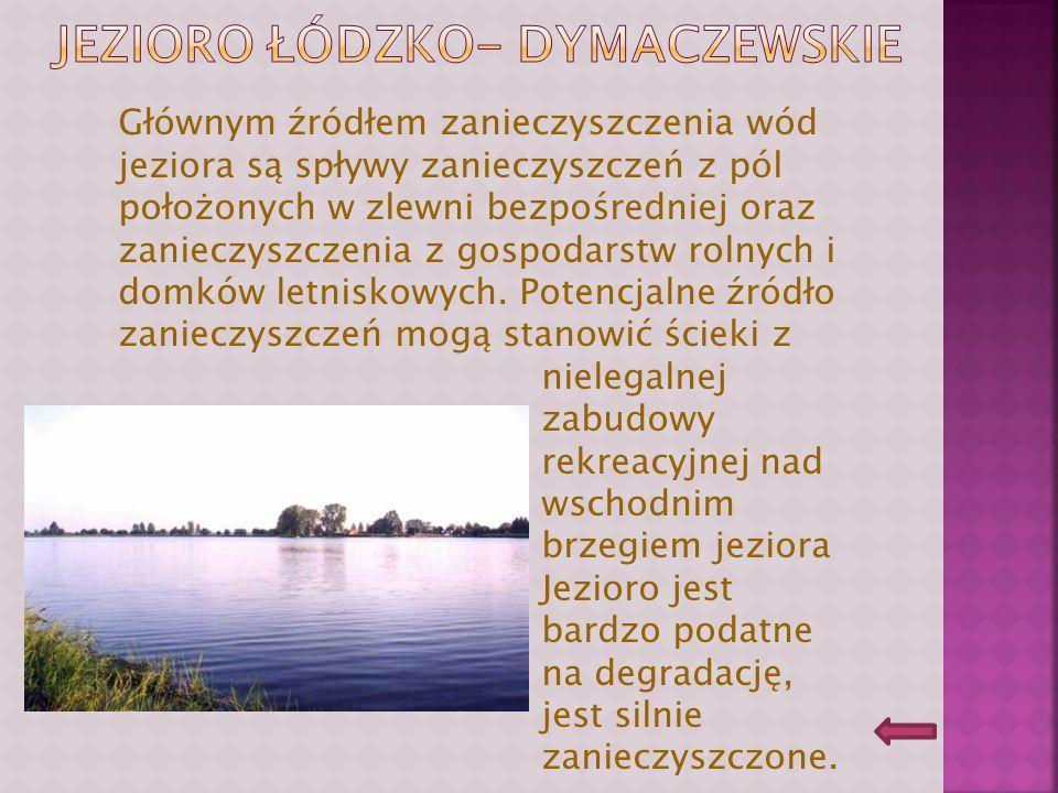 Głównym źródłem zanieczyszczenia wód jeziora są wody z pól uprawnych, zanieczyszczenia wód Samicy Stęszewskiej oraz spływ z nie skanalizowanej części miasta Stęszewa.