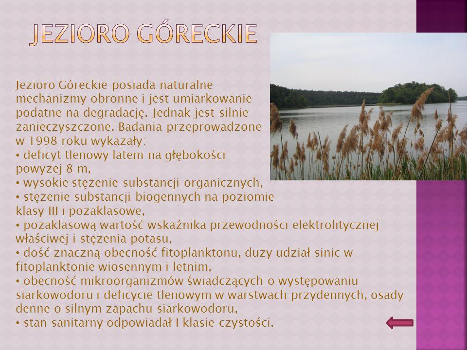 Jezioro Góreckie posiada naturalne mechanizmy obronne i jest umiarkowanie podatne na degradację.