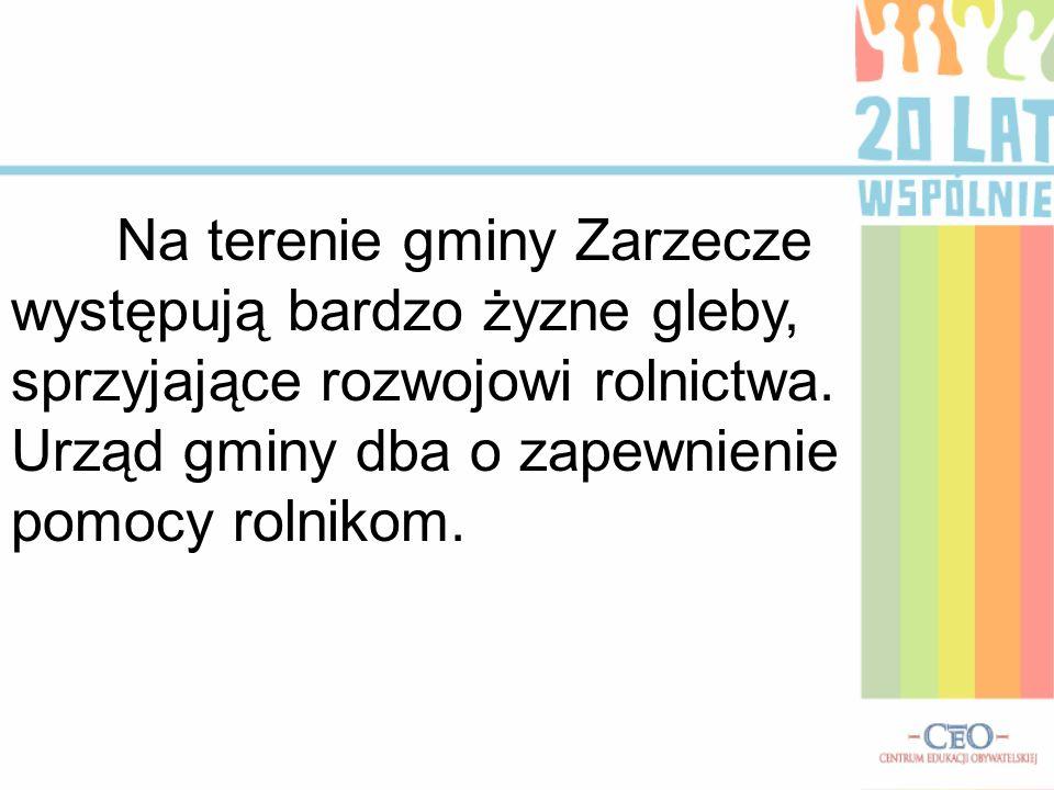 Na terenie gminy Zarzecze występują bardzo żyzne gleby, sprzyjające rozwojowi rolnictwa. Urząd gminy dba o zapewnienie pomocy rolnikom.
