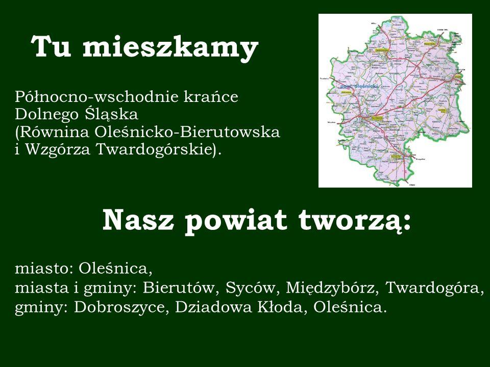 Zespół Projektowy: Wyrażamy zgodę na wykorzystanie i przetwarzanie naszych danych osobowych przez Centrum Edukacji Obywatelskiej, z siedzibą w Warszawie przy ul.