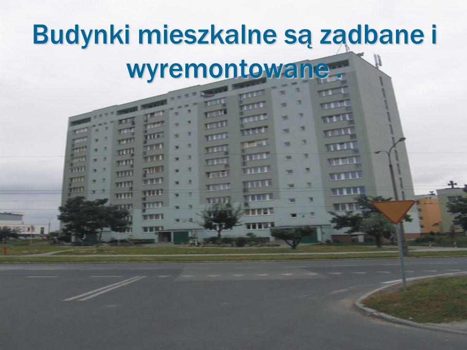 Budynki mieszkalne są zadbane i wyremontowane.