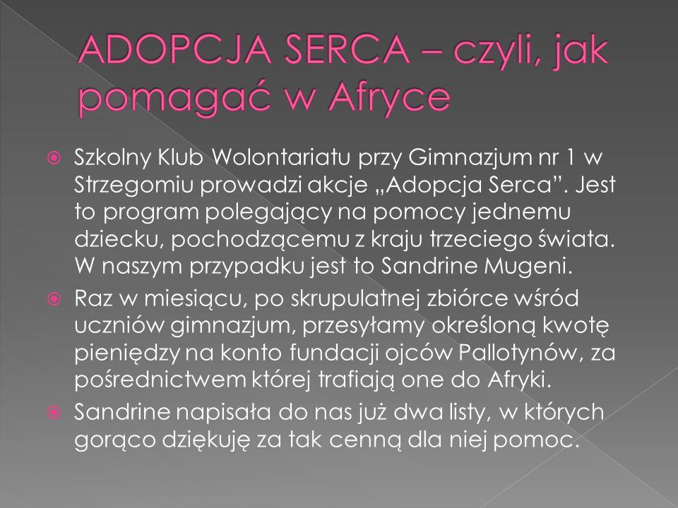 Szkolny Klub Wolontariatu przy Gimnazjum nr 1 w Strzegomiu prowadzi akcje Adopcja Serca.