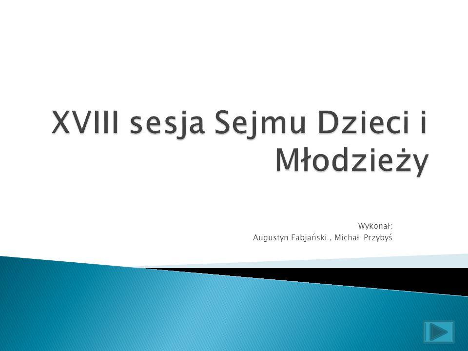 Wykonał: Augustyn Fabjański, Michał Przybyś