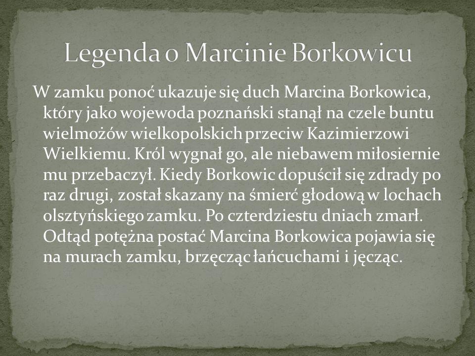 W zamku ponoć ukazuje się duch Marcina Borkowica, który jako wojewoda poznański stanął na czele buntu wielmożów wielkopolskich przeciw Kazimierzowi Wielkiemu.