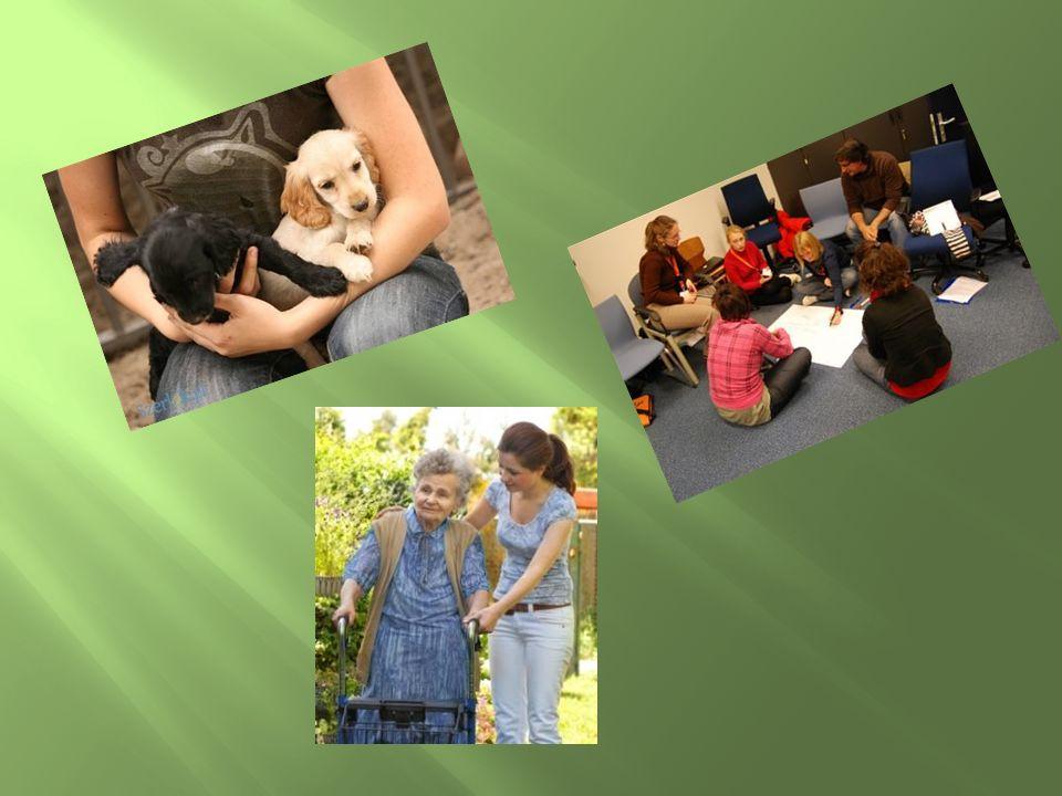 Praca w pobliskim schronisku dla zwierząt Organizacja czasu dla dzieci Pomoc osobom niepełnosprawnym Zbiórki materialne dla potrzebujących Przybliżenie wiadomości o nowoczesnych technikach osobom starszym Zachęcanie ludzi do odkrywania swoich talentów Rozwijanie sprawności fizycznych u dzieci jak i starszych poprzez różnego rodzaju wycieczki