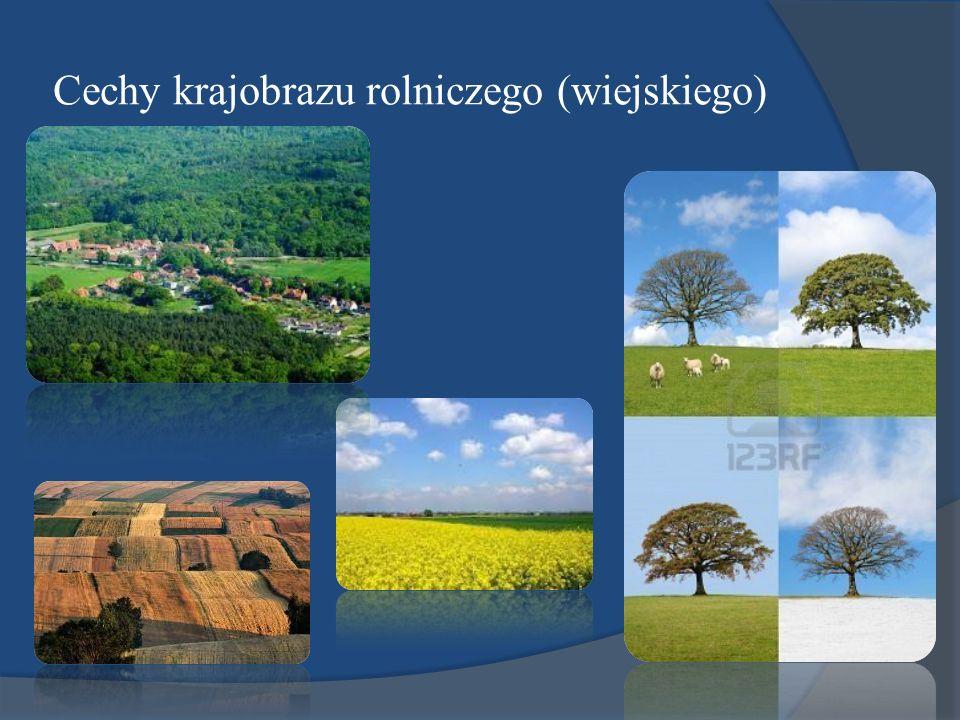 Cechy krajobrazu rolniczego (wiejskiego)