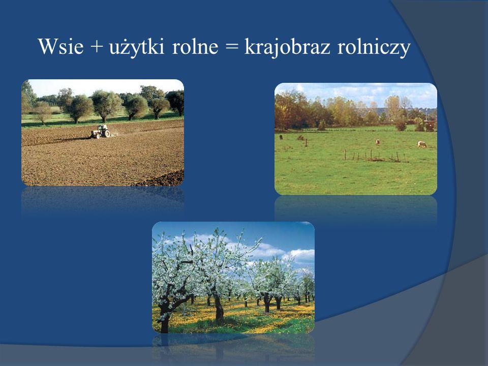 Wsie + użytki rolne = krajobraz rolniczy