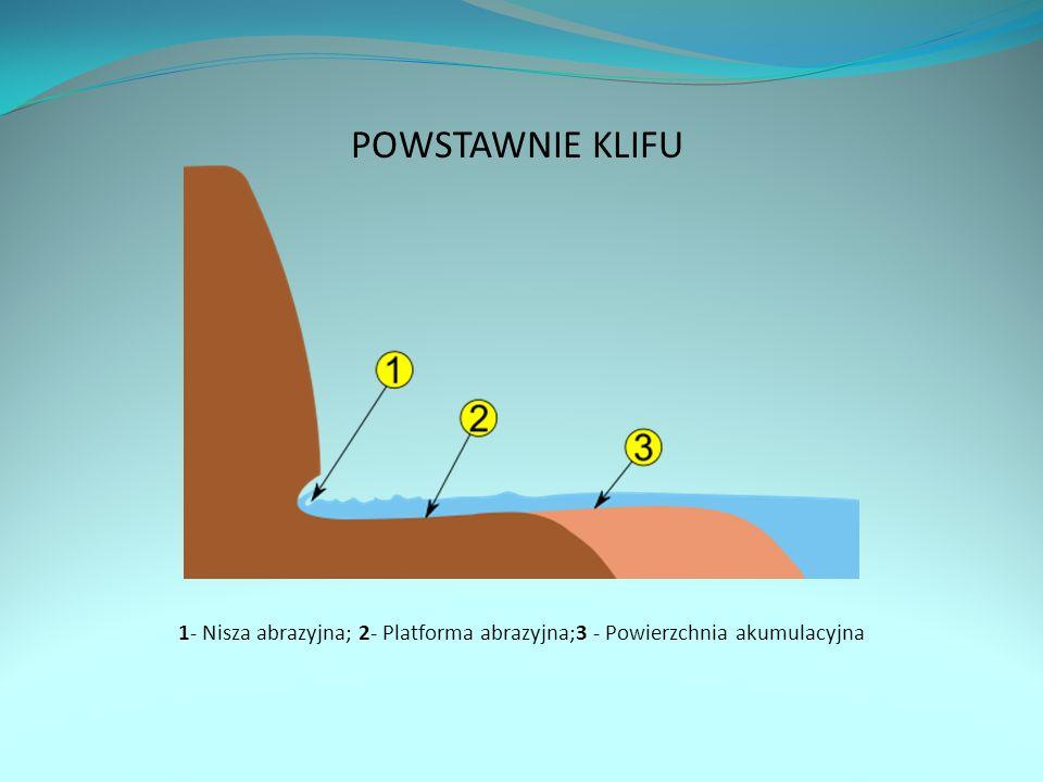 POWSTAWNIE KLIFU 1- Nisza abrazyjna; 2- Platforma abrazyjna;3 - Powierzchnia akumulacyjna