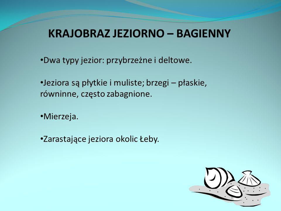 KRAJOBRAZ JEZIORNO – BAGIENNY Dwa typy jezior: przybrzeżne i deltowe.