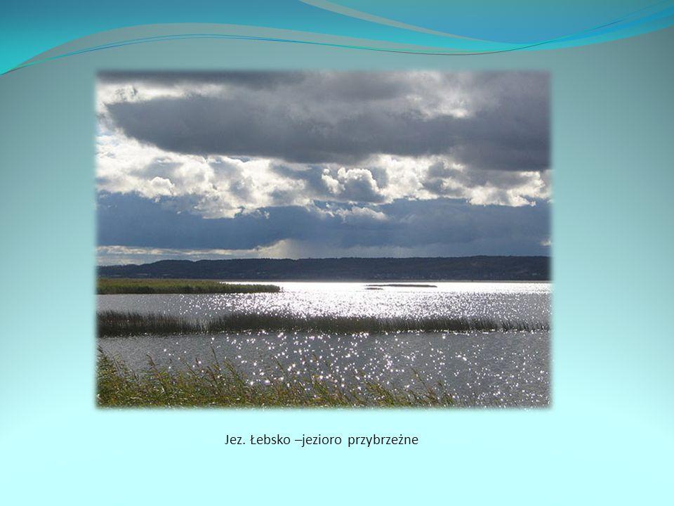 Jez. Łebsko –jezioro przybrzeżne