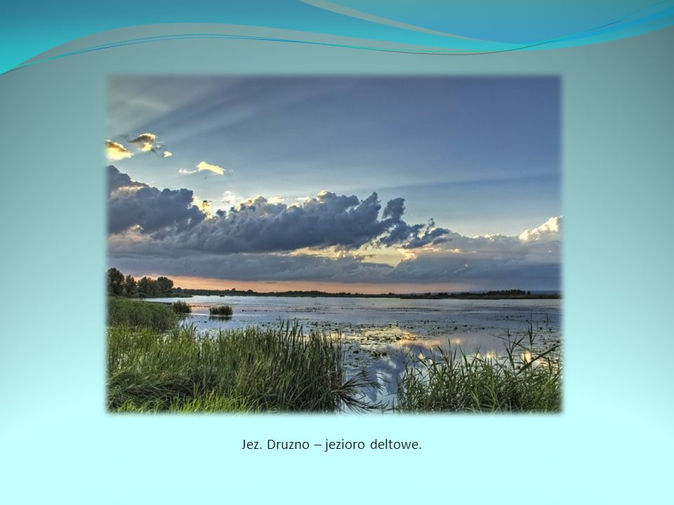 Jez. Druzno – jezioro deltowe.