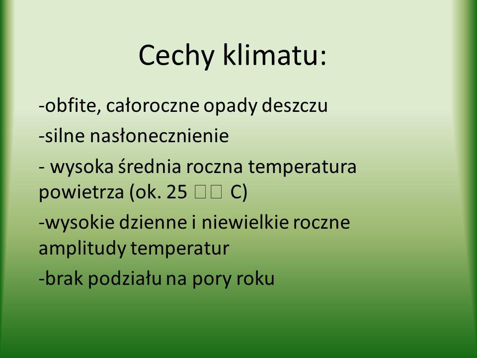 Cechy klimatu: -obfite, całoroczne opady deszczu -silne nasłonecznienie - wysoka średnia roczna temperatura powietrza (ok. 25 C) -wysokie dzienne i ni