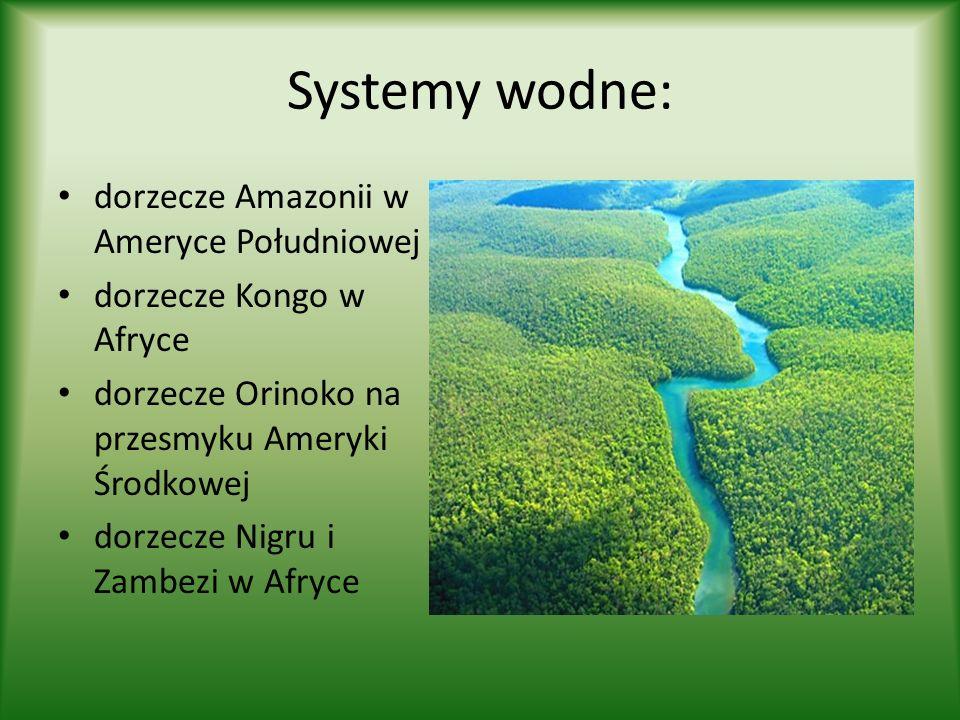 Systemy wodne: dorzecze Amazonii w Ameryce Południowej dorzecze Kongo w Afryce dorzecze Orinoko na przesmyku Ameryki Środkowej dorzecze Nigru i Zambez