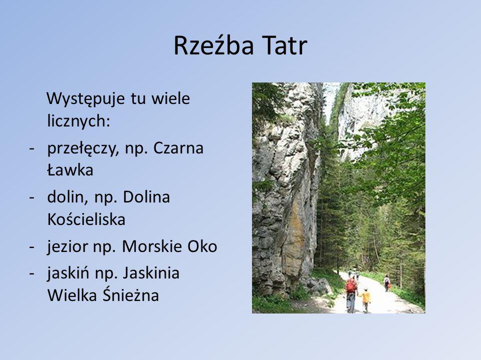 Rzeźba Tatr Występuje tu wiele licznych: -przełęczy, np. Czarna Ławka -dolin, np. Dolina Kościeliska -jezior np. Morskie Oko -jaskiń np. Jaskinia Wiel