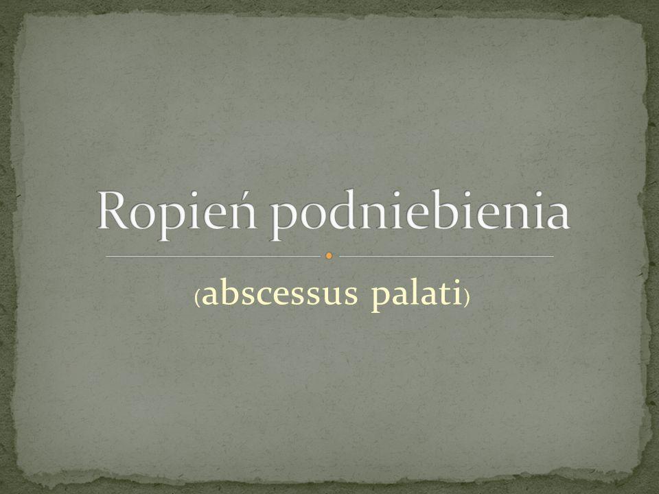( abscessus palati )