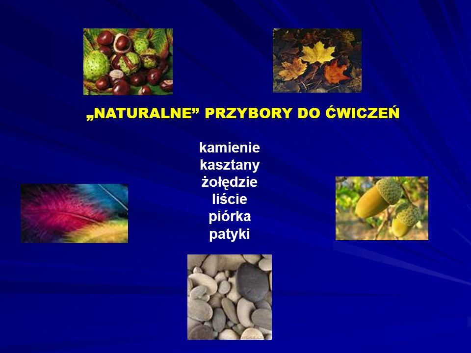 NATURALNE PRZYBORY DO ĆWICZEŃ kamienie kasztany żołędzie liście piórka patyki