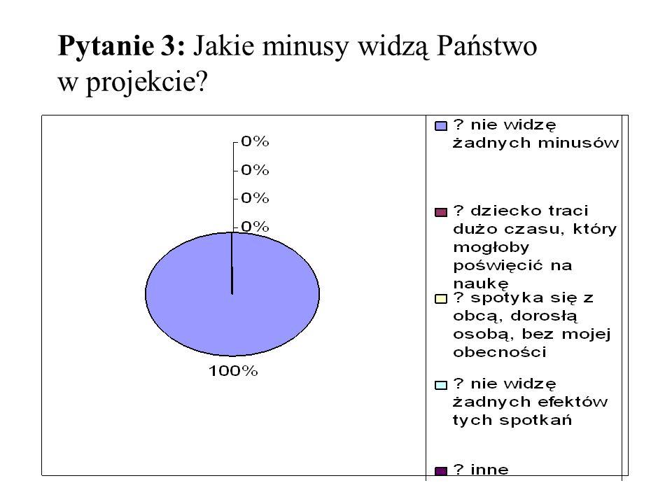 Pytanie 3: Jakie minusy widzą Państwo w projekcie?