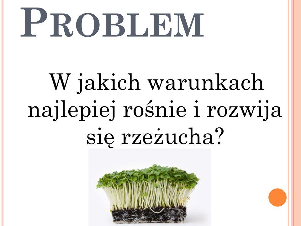P ROBLEM W jakich warunkach najlepiej rośnie i rozwija się rzeżucha?