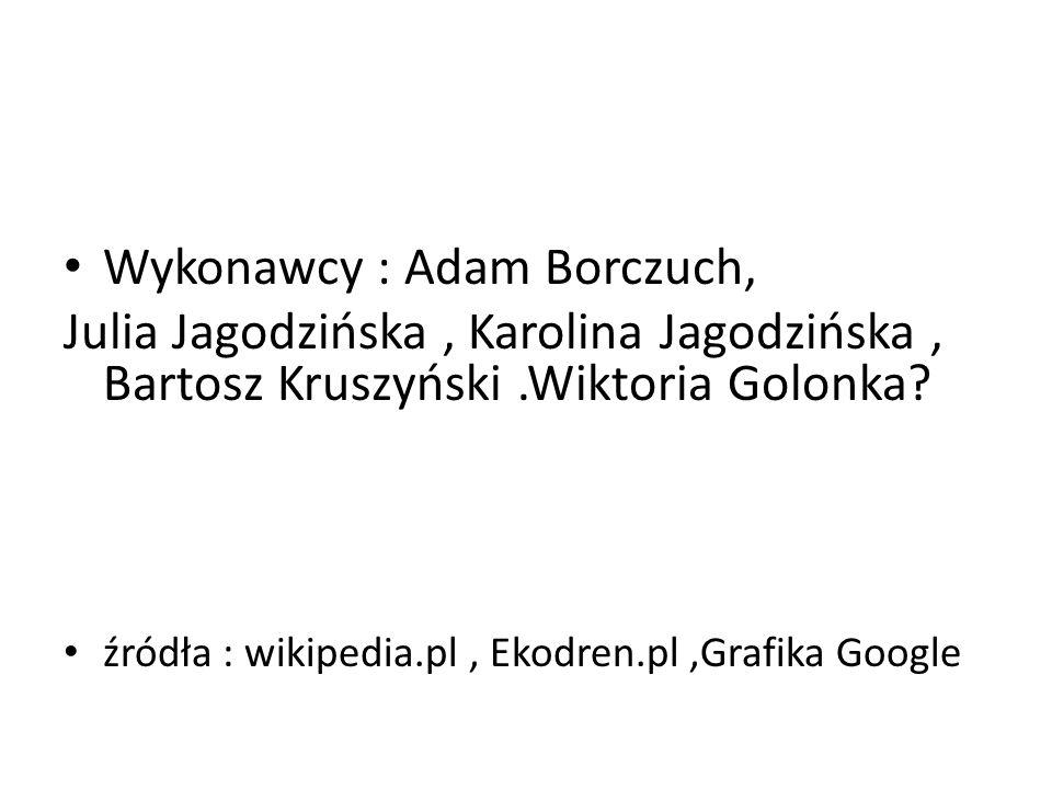 Wykonawcy : Adam Borczuch, Julia Jagodzińska, Karolina Jagodzińska, Bartosz Kruszyński.Wiktoria Golonka? źródła : wikipedia.pl, Ekodren.pl,Grafika Goo